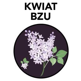 kwiat-bzu_znak_100-ml