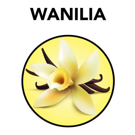 wanilia_znak_100-ml